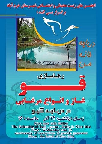 رها سازی اردک و غاز در خرم آباد