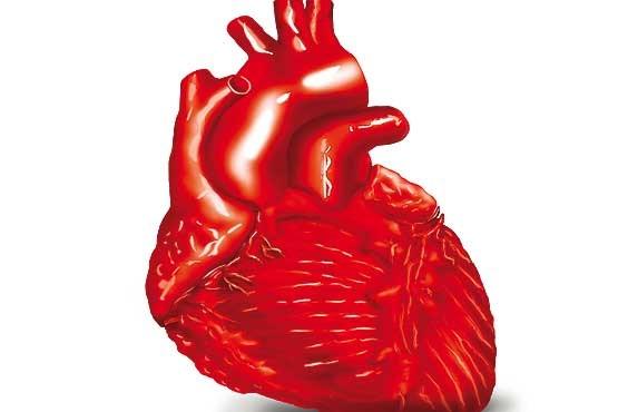 غذاهای محافظ قلب را بشناسید